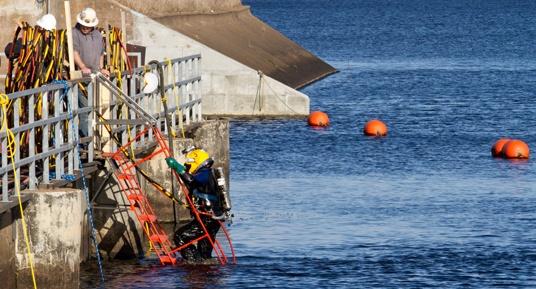 dive inspections, underwater inspections, dam inspections, FERC Part 12 Inspections, commercial divers, underwater construction, certified divers