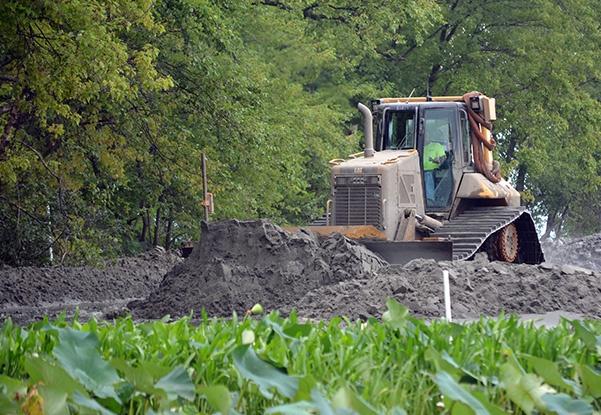 Environmental Habitat Restoration